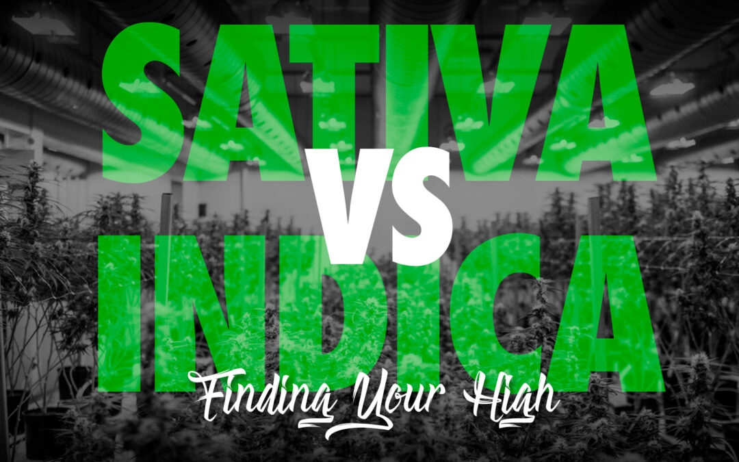 SATIVA VS INDICA: FINDING YOUR HIGH