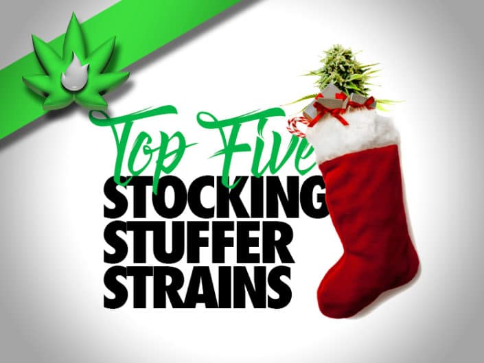 Top Five Christmas Cannabis Strains