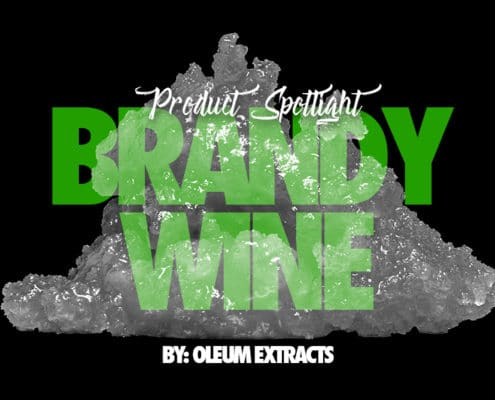 Brandy Wine by Oleum Extracts