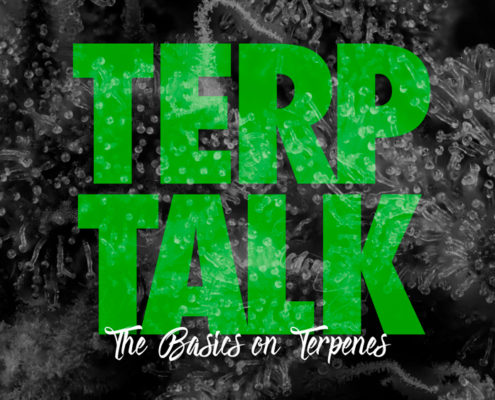Terp Talk: The basics on Terpenes