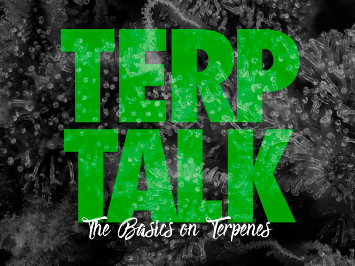 Terp Talk: The basics on Terpenes