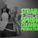 SpringCleaningCannabisStrains