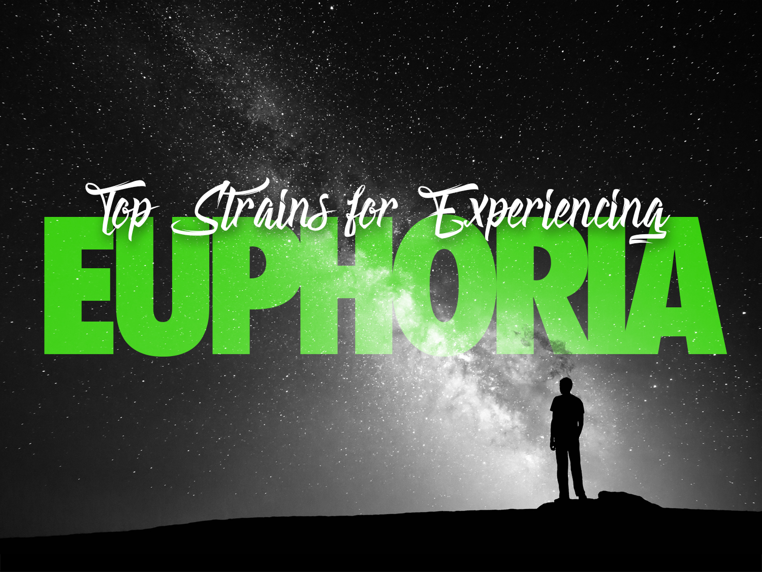 Cannabis Strains to Experience Euphoria
