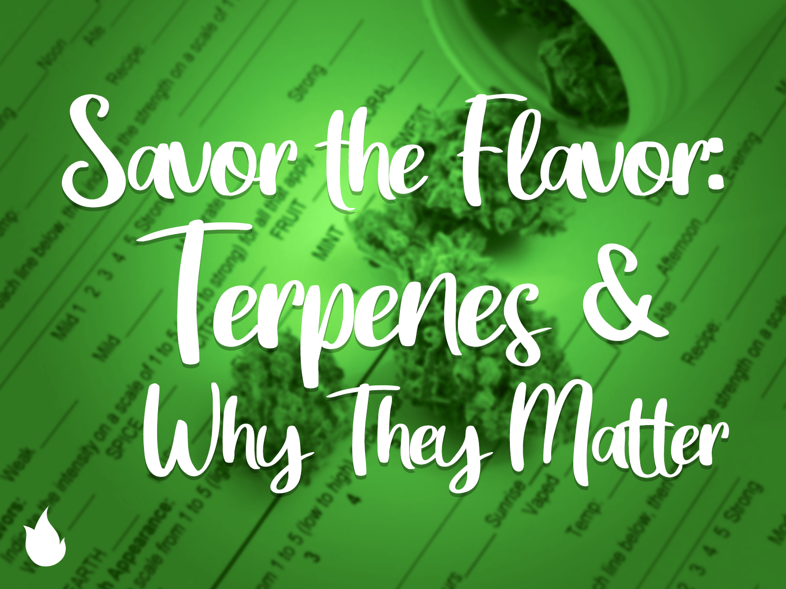 TERPENES: SAVOR THE FLAVOR
