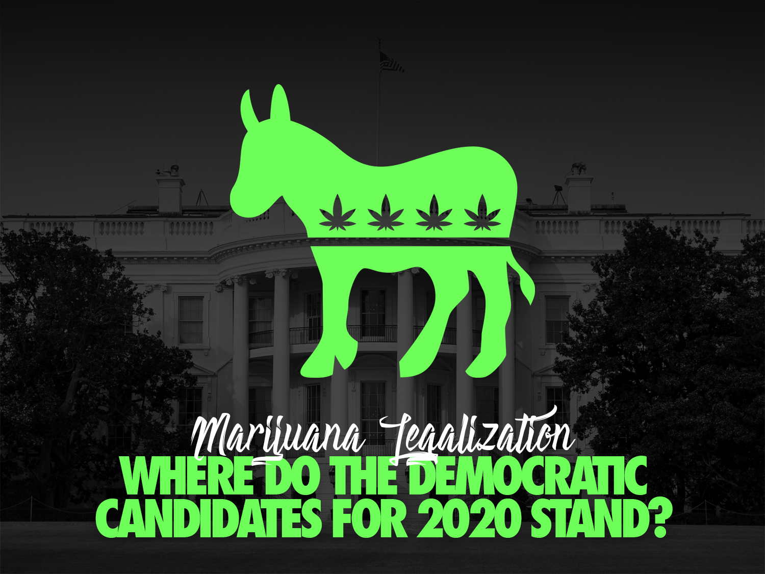 Marijuana Legalization: Where do the Democratic Candidates for 2020 stand?