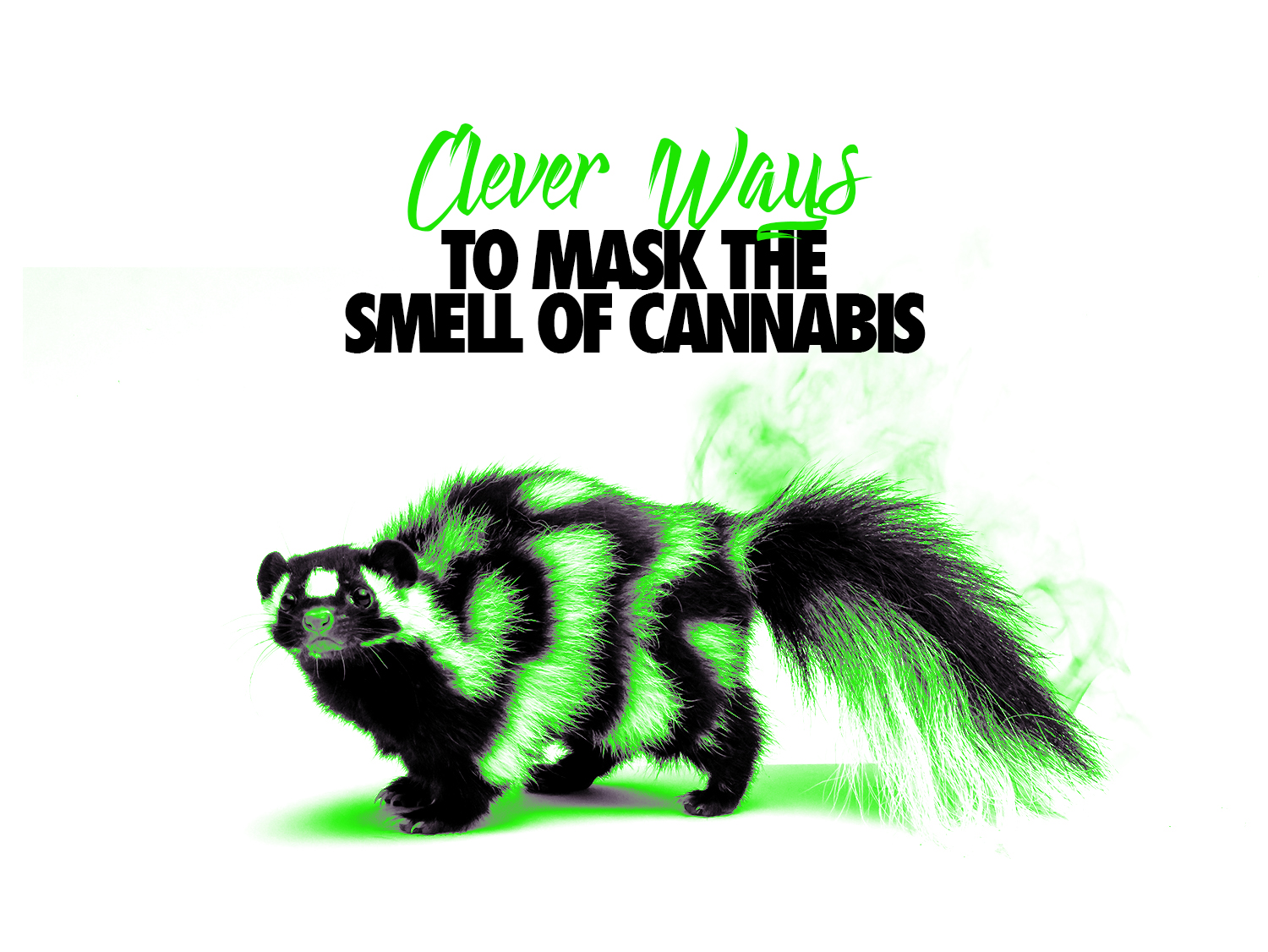 Clever Ways to Mask the Smell of Cannabis