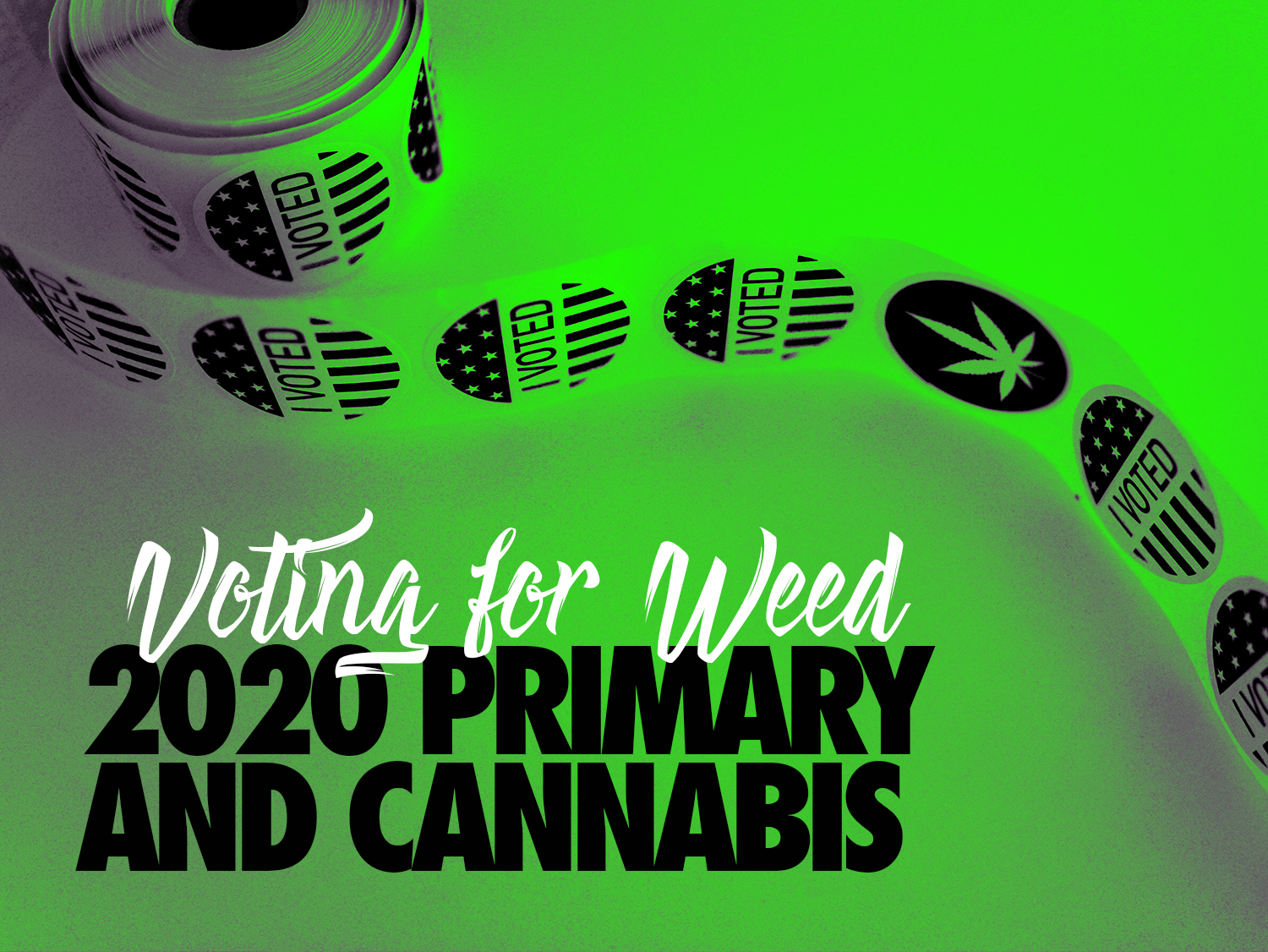Voting For Weed: The 2020 Primary and Cannabis