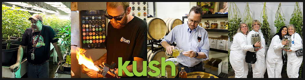 Kush Tours Seattle