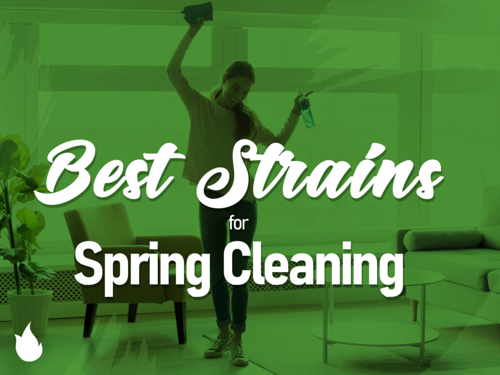 Best Cannabis Strains for Spring Cleaning