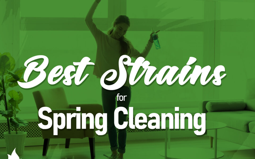 Best Strains for Spring Cleaning