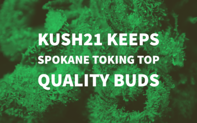 Kush 21 Keeps Spokane Toking Top Quality Buds