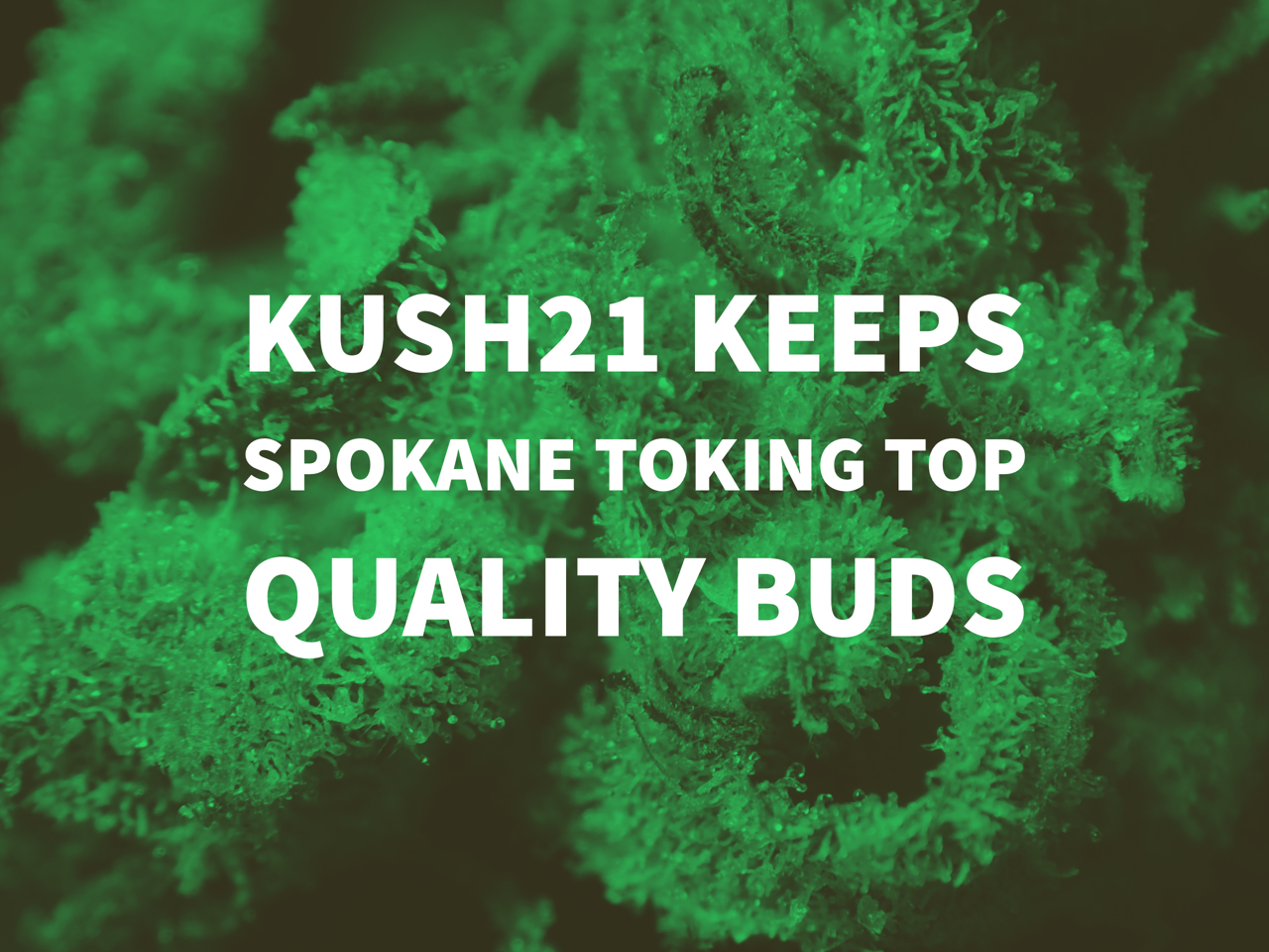 Kush21 In Spokane Washington