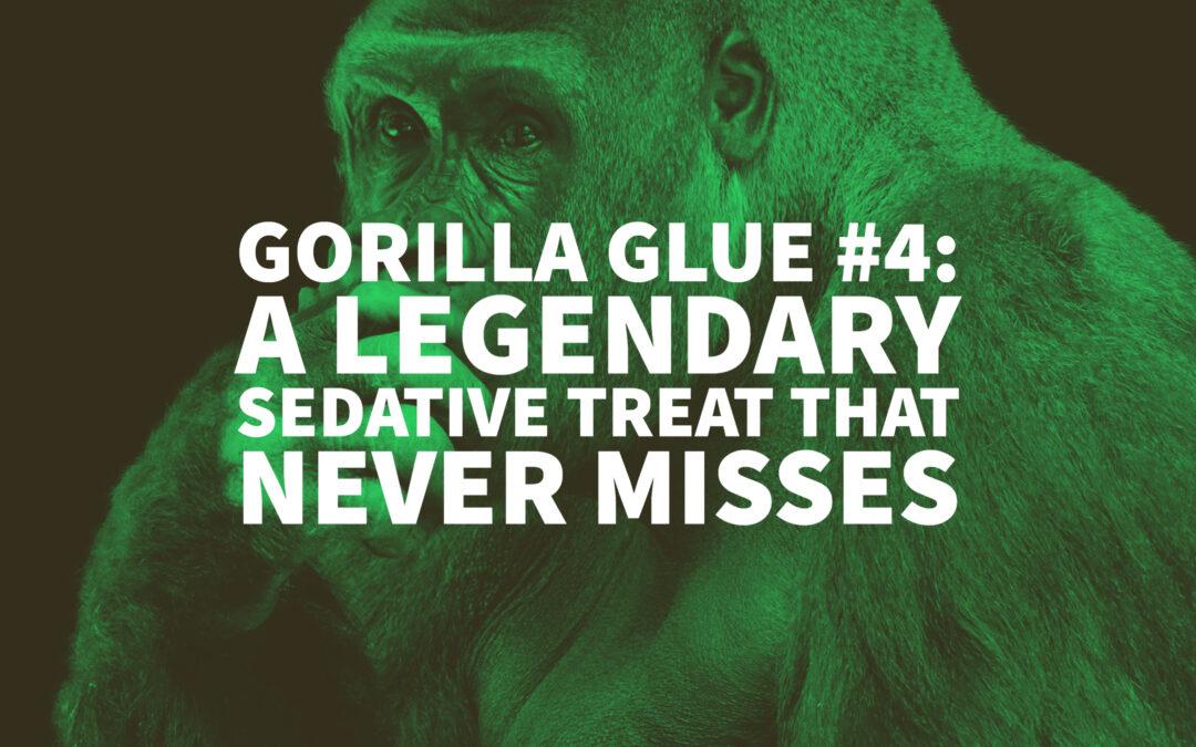 Gorilla Glue #4: A Legendary Sedative Treat That Never Misses