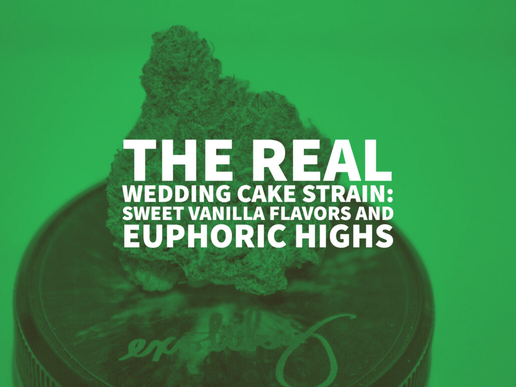 The Real Wedding Cake Strain: Sweet Vanilla Flavors And Euphoric Highs
