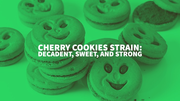 Cherry Cookies Strain: Decadent, Sweet, And Strong